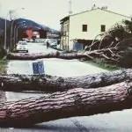 vento toscana 01
