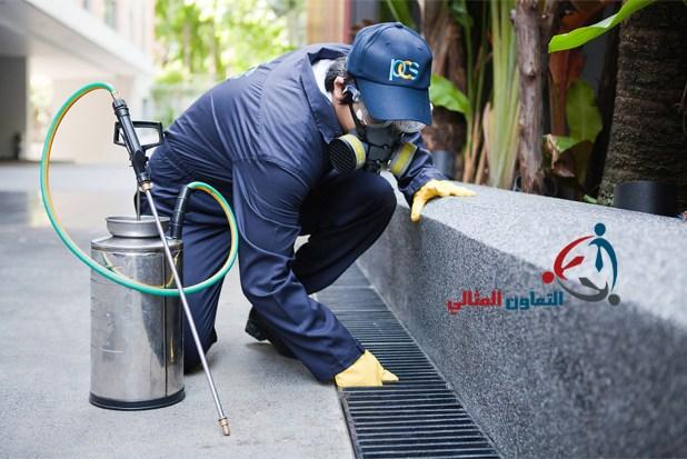 شركة رش مبيدات بالبحرين