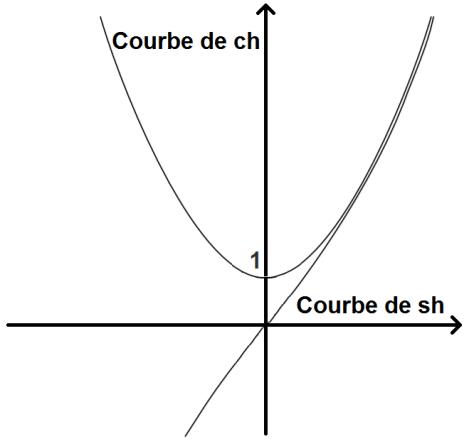 courbes de cosinus hyperbolique et sinus hyperbolique