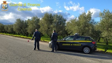 Photo of False giornate agricole: 33 indagati e 200mila € in beni sequestrati