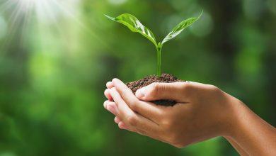 Photo of Ambiente: in arrivo importanti finanziamenti per 20 comuni della Locride