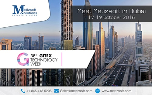 Meet Metizsoft in Dubai