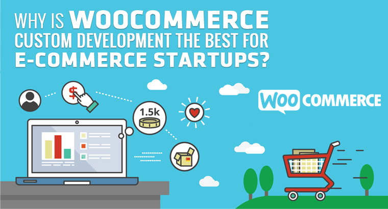 Why Is WooCommerce Custom Development The Best For E-Commerce Startups?
