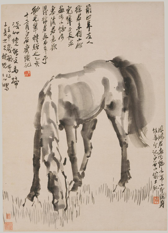 hight resolution of  grazing horse grazing horse