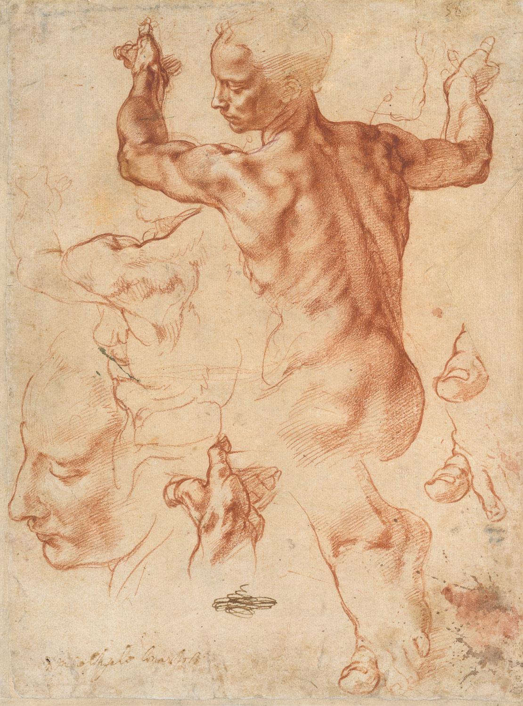 Michelangelo. Libyan Sibyl.