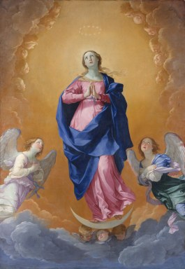 Image result for immaculate conception reni