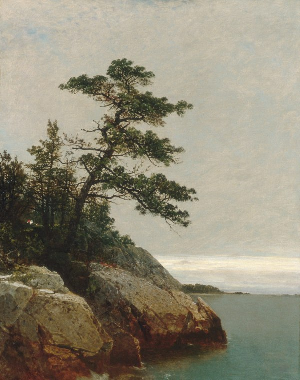 John Frederick Kensett the Old Pine Darien Connecticut