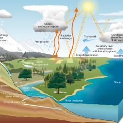 Labelled Diagram Of Water Cycle Cummins N14 Engine For Kids Met Office The