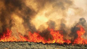 UK Fire Severity Index  Met Office