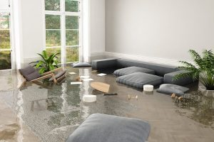 Water Damage Company SEO