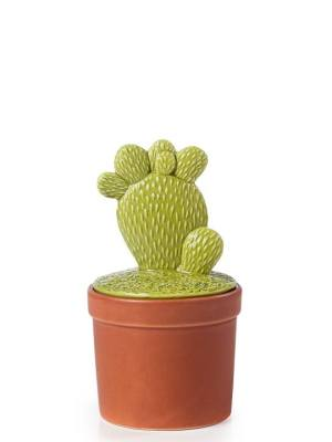 Cactus Terracotta Decor Canister Small – Prickly Pear