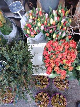 Tulipanes por bouquets y bulbos