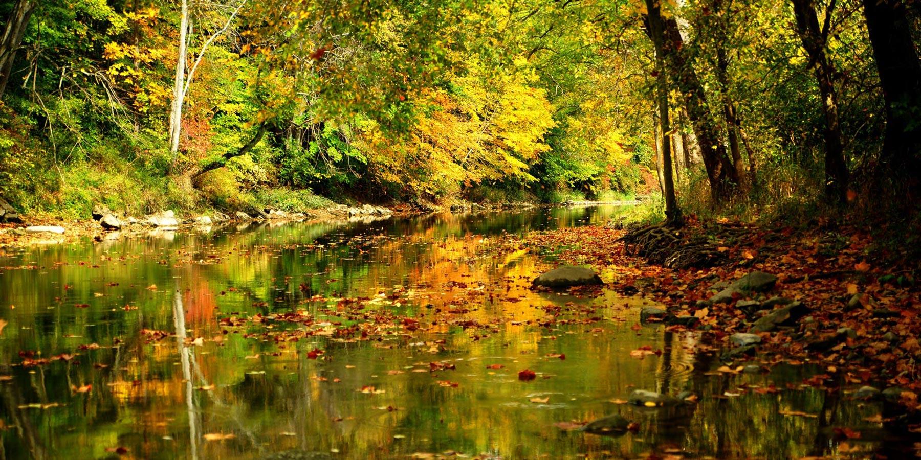 Northeast Fishing Ohio