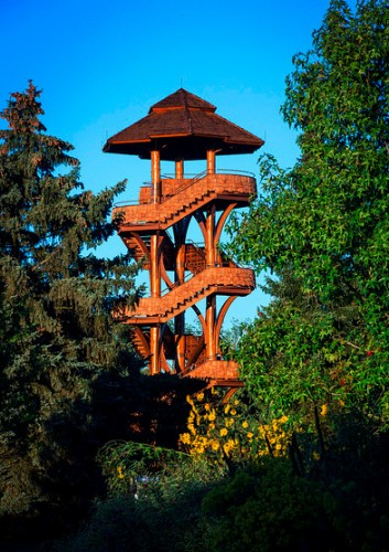 Tree Tower  Five Rivers MetroParks