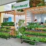 SM City Baliwag introduces Farm Ready concept store for aspiring farmers that offers high-quality vegetable seedlings and products that provides essentials in vegetable farming.
