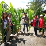 Century Pacific Commits to Coconut Replanting Initiative, Subsidiary aims to be carbon neutral by 2028