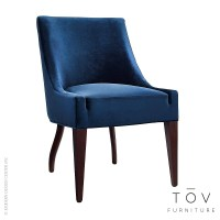 Dover Blue Velvet Chair, Set of 2 | Tov Furniture ...
