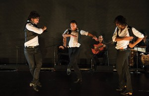 Gala's Fuego Flamenco Festival - Photo: Theo Kossenas