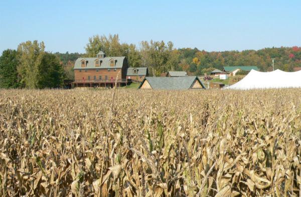 Photo: Liberty Ridge Farm