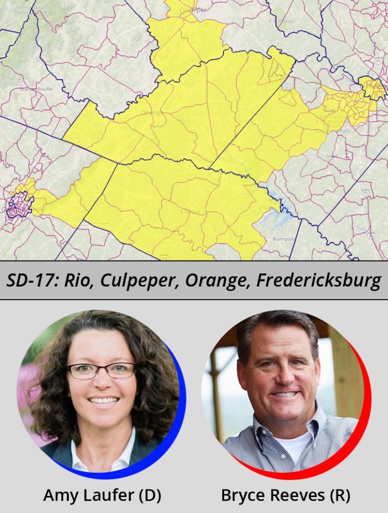 Virginia Senate District 17