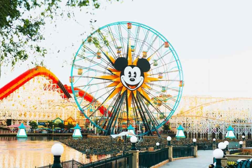 Disney, Disneyland, disney work, gender, lgbtq