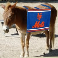 Wondering what happened to Mettle the Mule after his time with the Mets -  The Mets Police