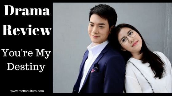 You're My Destiny (2017) Drama Review - Metta Cultura