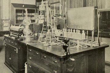 Fleisch Labor
