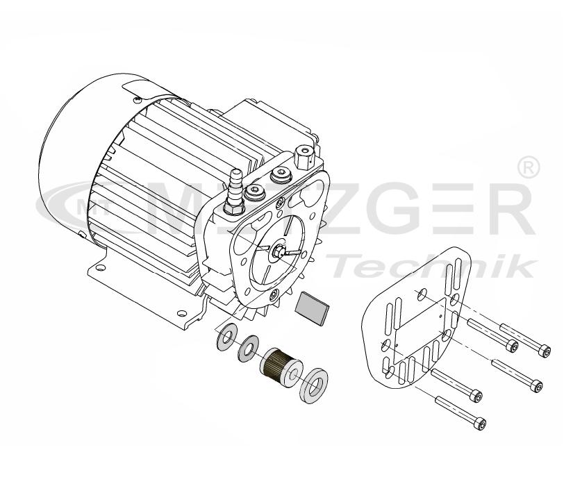 Service-Kit Rotary Vane Pump PICOLINO VTE/DTE 6 Metzger