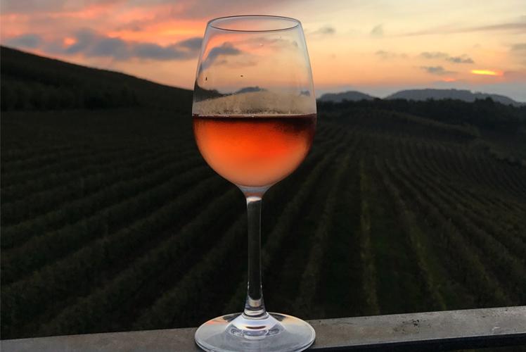 Capa Vale dos Vinhedos - Spa do Vinho