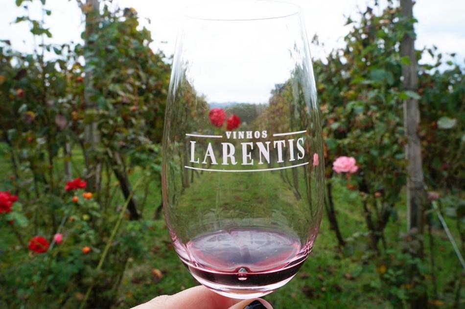 Vale dos Vinhedos - Vinhos Larentis