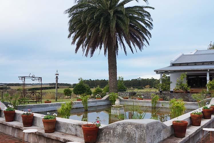 Capa Narbona, La Barra - Uruguai