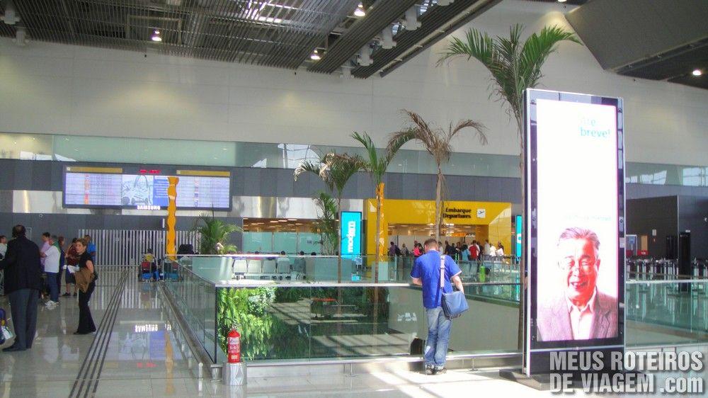 Plantas no T3 do Aeroporto de Guarulhos