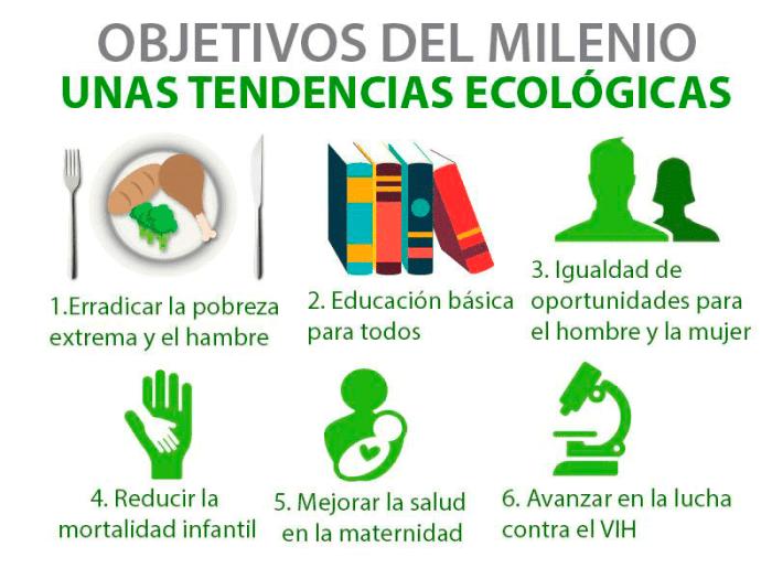 Objetivos del Milenio, unas tendencias ecológicas