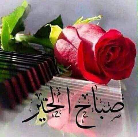 صور صباح الورد رمزيات صباح الورد والفل والياسمين ميكساتك