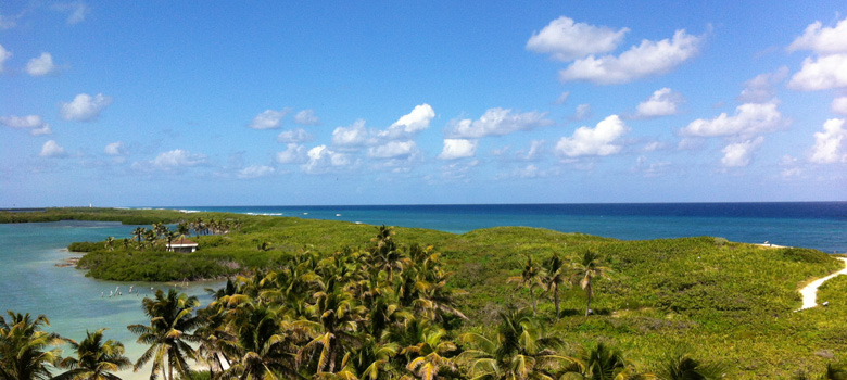 Tour Isla Contoy Mexican Caribbean