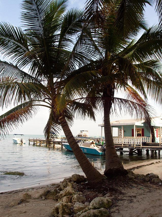 Ambergris Caye Belize | #travel #Belize #AmbergrisCaye
