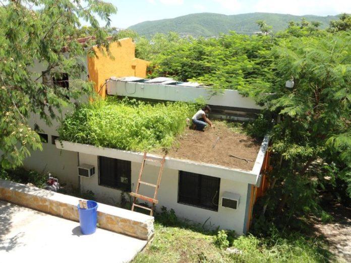 Alternative roofs