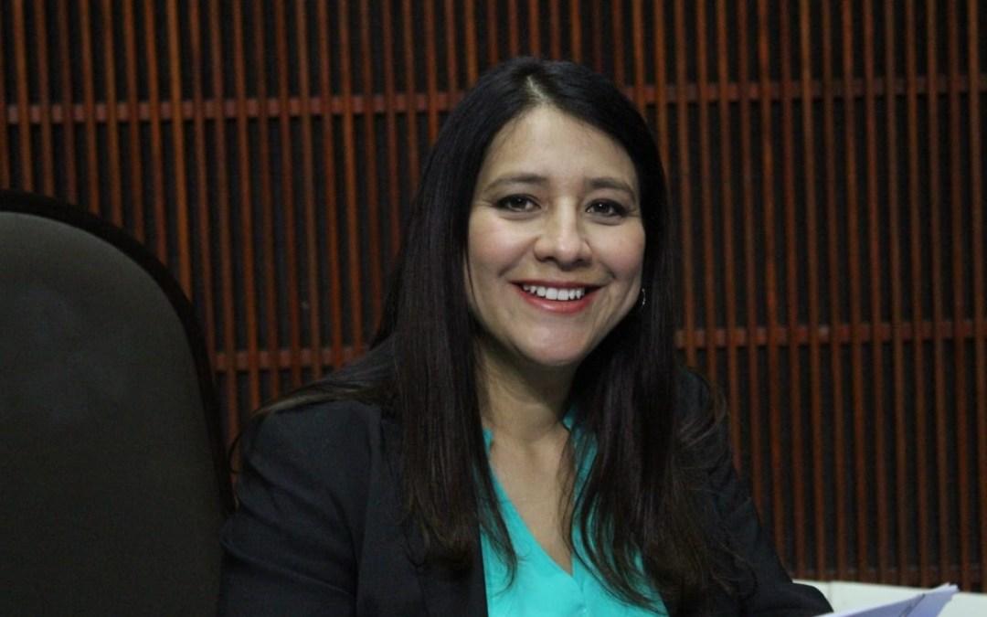 Las acciones de Morena afectan la CNDH y su titular
