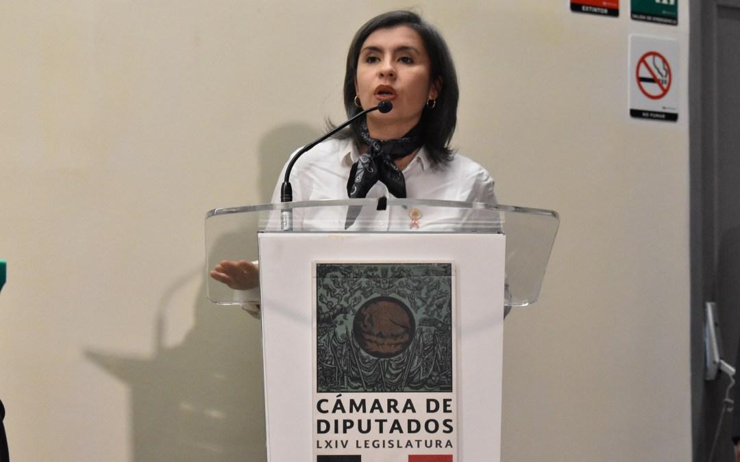 Delitos contra las mujeres no se tipifican de forma adecuada: Briceño