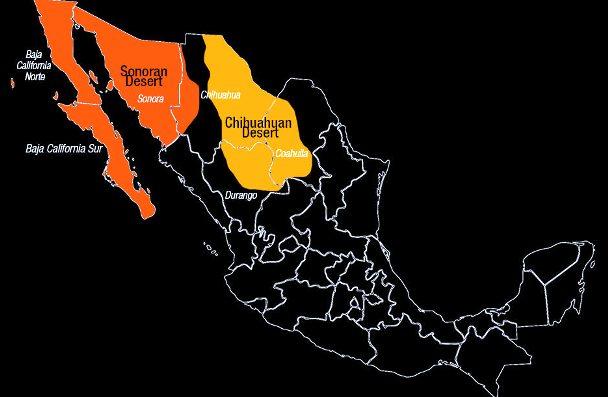 Resultado de imagen para desiertos de mexico