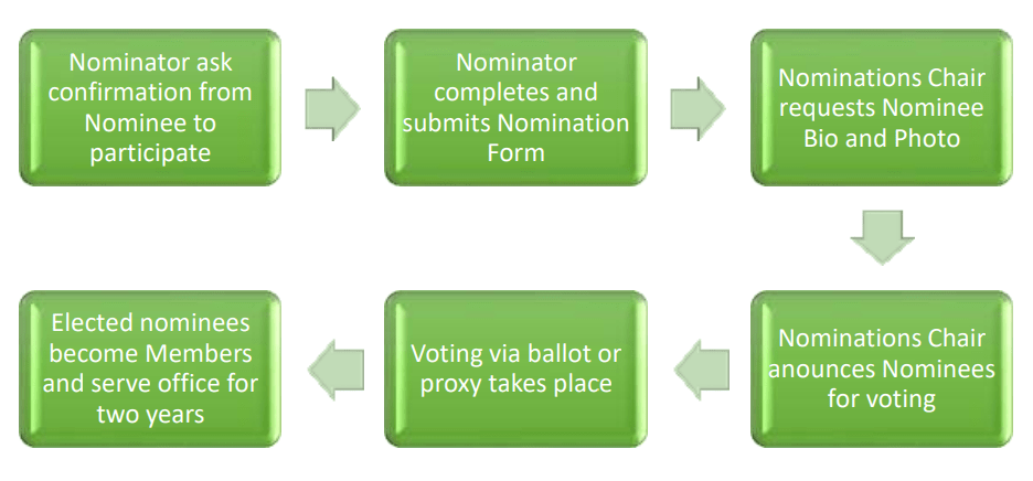 MexyCan Election Process