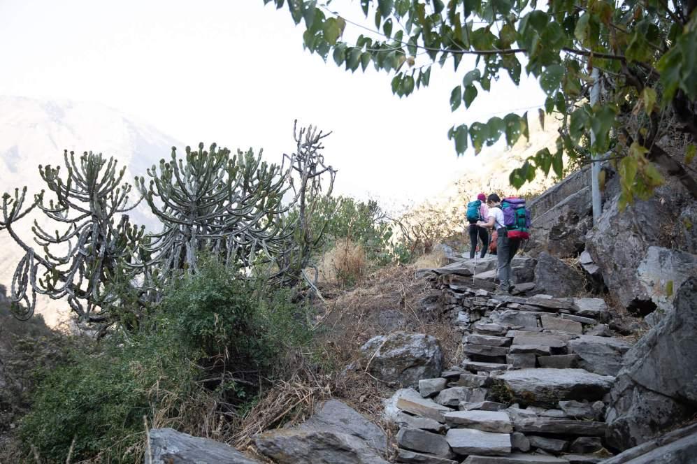 Nepal trekking (119)