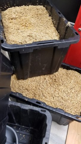Spent grain ready for pick up.