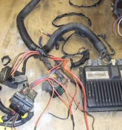chevy vortec 5700 l31 chevy vortec wiring harness [ 1024 x 768 Pixel ]