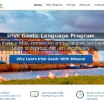 Bitesize Irish Gaelic Review