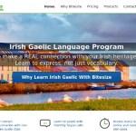 Review: Bitesize Irish Gaelic