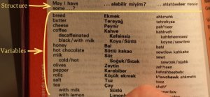 Berlitz Turkish