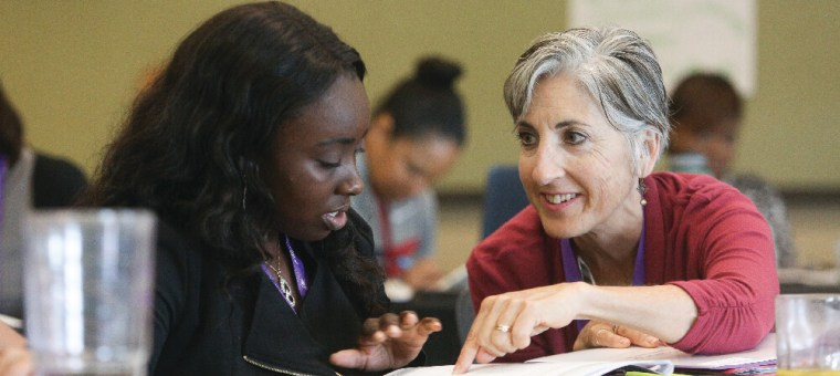 A 2017 Fellow and a mentor work together during the Fellowship