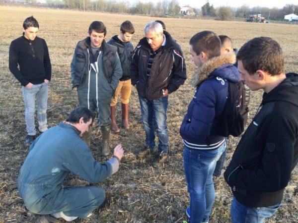 essais semis direct en sol de marais